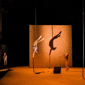 An aerial artist hangs from a rope from above. She is upside down, her body curved into a 'c' shape. Her shadow sits perfectly behind her.